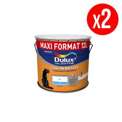 Lot de 2 pots de peinture monocouche COLOR RESIST - toutes pièces - lessivable & résistant - mat - blanc - 2 x 12L