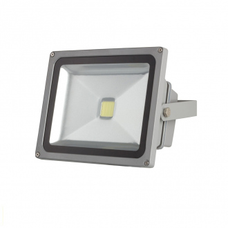 Projecteur LED - 30W - blanc froid - gris