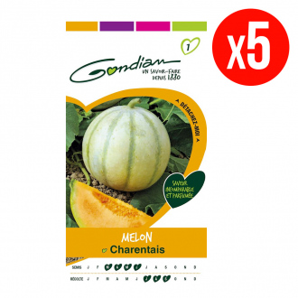 Lot de 5 sachets de graines de Melon Charentais