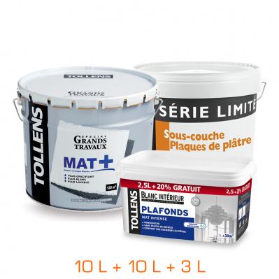 Lot de 3 pots - 1 sous-couche 10 L + 1 monocouche mat 10 L + 1 plafonds 3 L - Blanc
